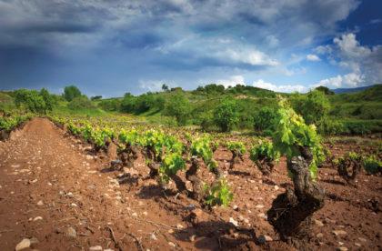 Rioja 2